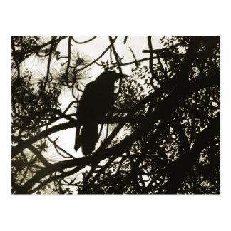 Raven Steampunk Postcard