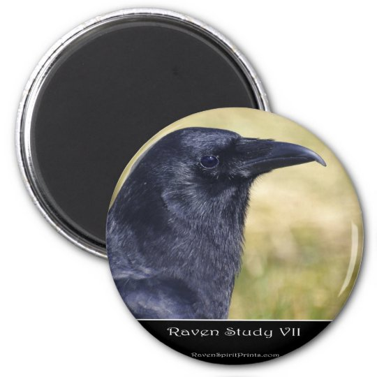 RAVEN STUDY Collection Magnet