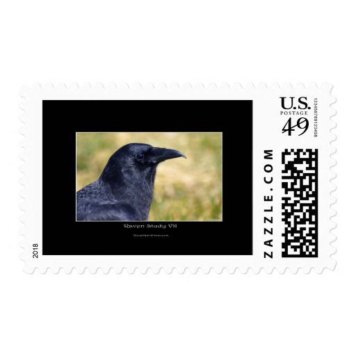 RAVEN STUDY Collection Postage