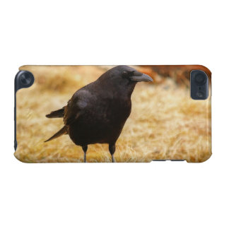 Raven & Summer Grass Corvid-lovers Photo iPod Touch 5G Case