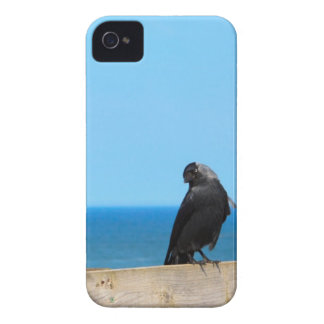 Raven Watching iPhone 4 Case