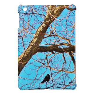 raven watching over you cover for the iPad mini
