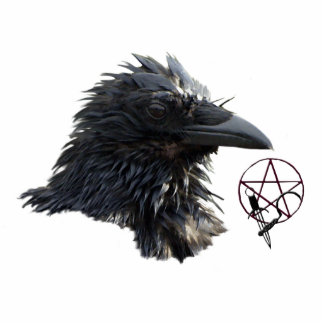 Raven Wiccan Pentacle (sculpted) Magnet