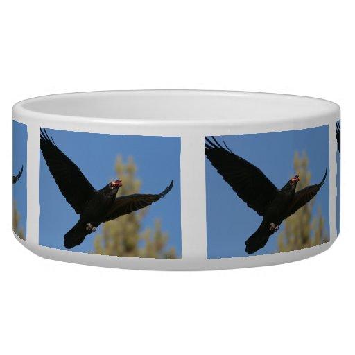 Raven with Bison Pet Food Bowls