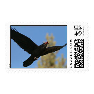 Raven with Bison Postage