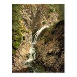 Ravenna Gorge, Black Forest, Baden, Germany rare P Postcards