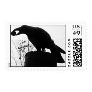 Raven's Bite Postage