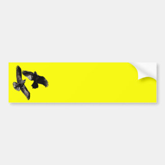 ravens car bumper sticker