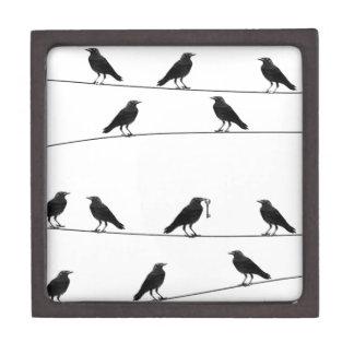 Ravens on a wire premium keepsake box