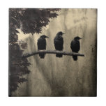 "Ravens Perched Ceramic Tile<br><div class=""desc"">Three ravens on a branch done in vintage,  aged style.</div>"