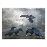Ravens play with lost Time Photo Print