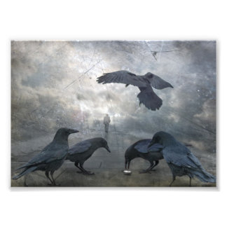 Ravens play with lost Time Art Photo