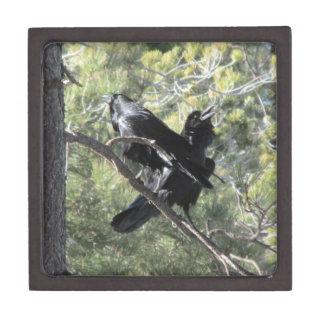 Ravens Talking on the Mountain Premium Trinket Boxes