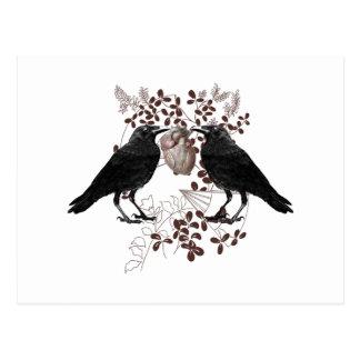 Ravens vying for heart postcard