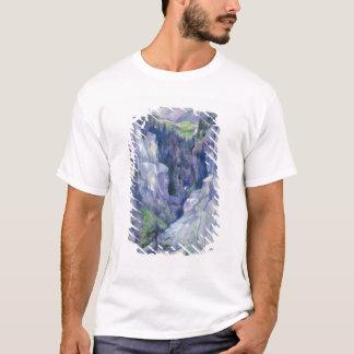 Ravine at Pians, 1921 T-Shirt