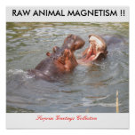 RAW ANIMAL MAGNETISM !! by Surprise G... Poster