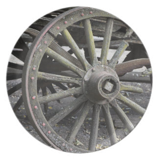 Raw Chariot Wheel Party Plates
