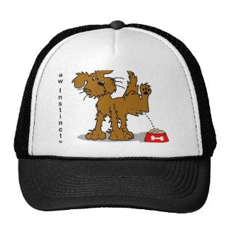 Raw Fed Dogs Pee on Kibble Trucker Hat