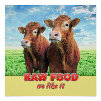 RAW FOOD we like it Poster