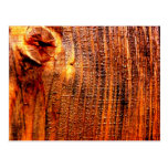Raw Norway Spruce Wood Post Card