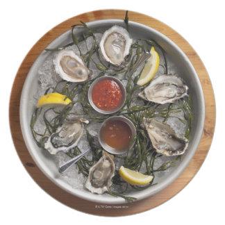 Raw oysters arranged melamine plate