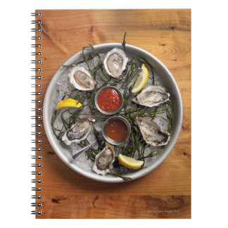 Raw oysters arranged spiral note book