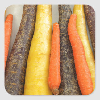 Raw Purple Yellow and Orange Carrots Square Sticker
