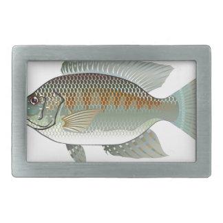 Raw Seafood Tilapia Fish Vector Belt Buckle