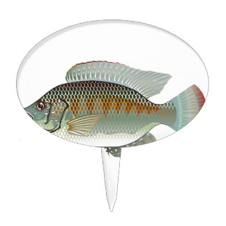 Raw Seafood Tilapia Fish Vector Cake Topper