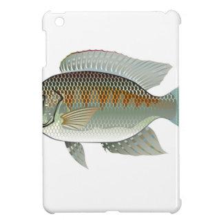 Raw Seafood Tilapia Fish Vector iPad Mini Cases