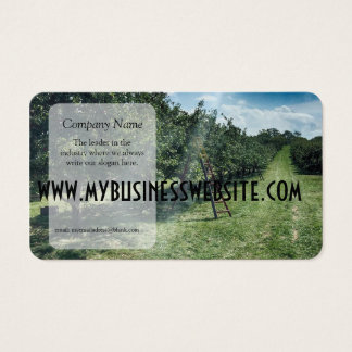 Ray of light hits a Ladder in An Apple Orchard Business Card