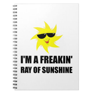 Ray Of Sunshine Spiral Notebook