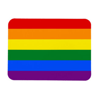 Raya de la bandera del arco iris del orgullo gay rectangle magnet