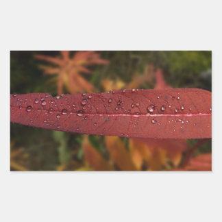 Raya de las gotas del agua pegatina rectangular
