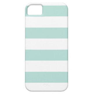 Rayas ajustables de PixDezines/color diy iPhone 5 Carcasas