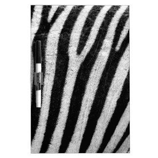 Rayas blancos y negros del pelo de la cebra