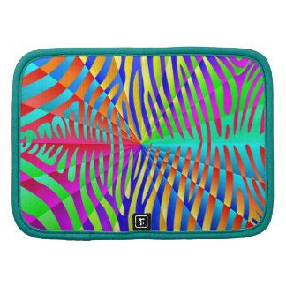 Rayas coloridas del arco iris del modelo de moda organizadores