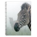 Rayas con clase africanas lindas del safari de la  libro de apuntes