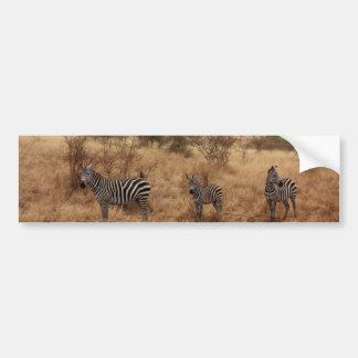 Rayas con clase africanas lindas del safari de la pegatina para auto