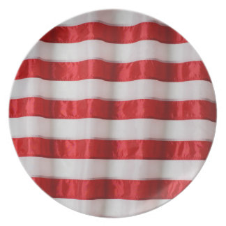 Rayas de la bandera americana de la placa de la platos de comidas