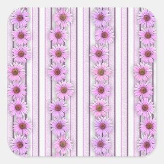 Rayas de la flor del Echinacea Colcomania Cuadrada