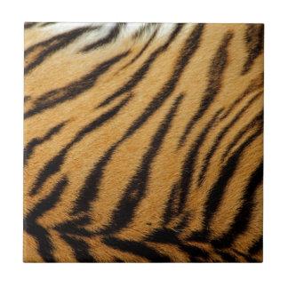 Rayas de la piel del tigre azulejo cuadrado pequeño