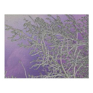 Rayas de plata afortunadas V5 de la púrpura n Tarjetas Postales