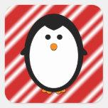 Rayas del pingüino calcomanía cuadradas personalizada