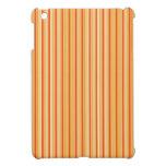 Rayas iPad Mini Carcasa