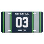 Rayas personalizadas de los deportes del verde azu placa de matrícula