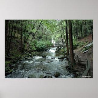 Raymondskill River in the Poconos. print 030