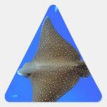 Rayo de águila y submarino manchados del tiburón d pegatinas de triangulo