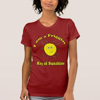 Rayo de Friggin de la camisa de la sol