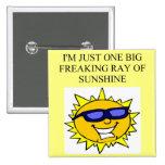 rayo de la sol freaking pin